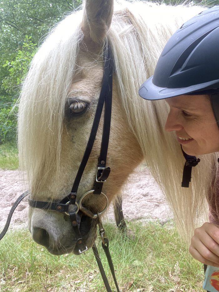 Wil jij ook paardrijden in IJsland? Boek nu.